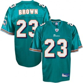 Miami Dolphins NFL Aqua Football Jersey #23 Ronnie Brown